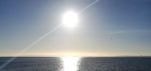 Flugt. Morgensol over Skæring Strand. Eget billede