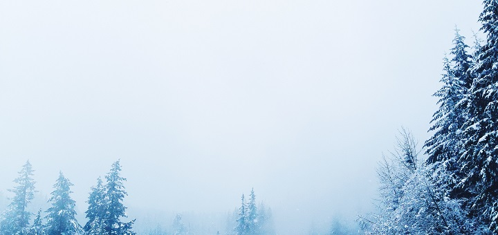 Vintertab. Foto af Bryce Evans / Unsplash