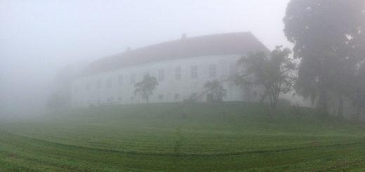 tillid - ørslev kloster