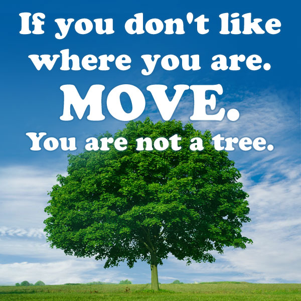 Mod. Billedtekst: If you dont like where you are. Move. You are not a tree