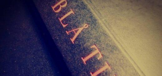 Bogomslag Joan Didion Blå timer