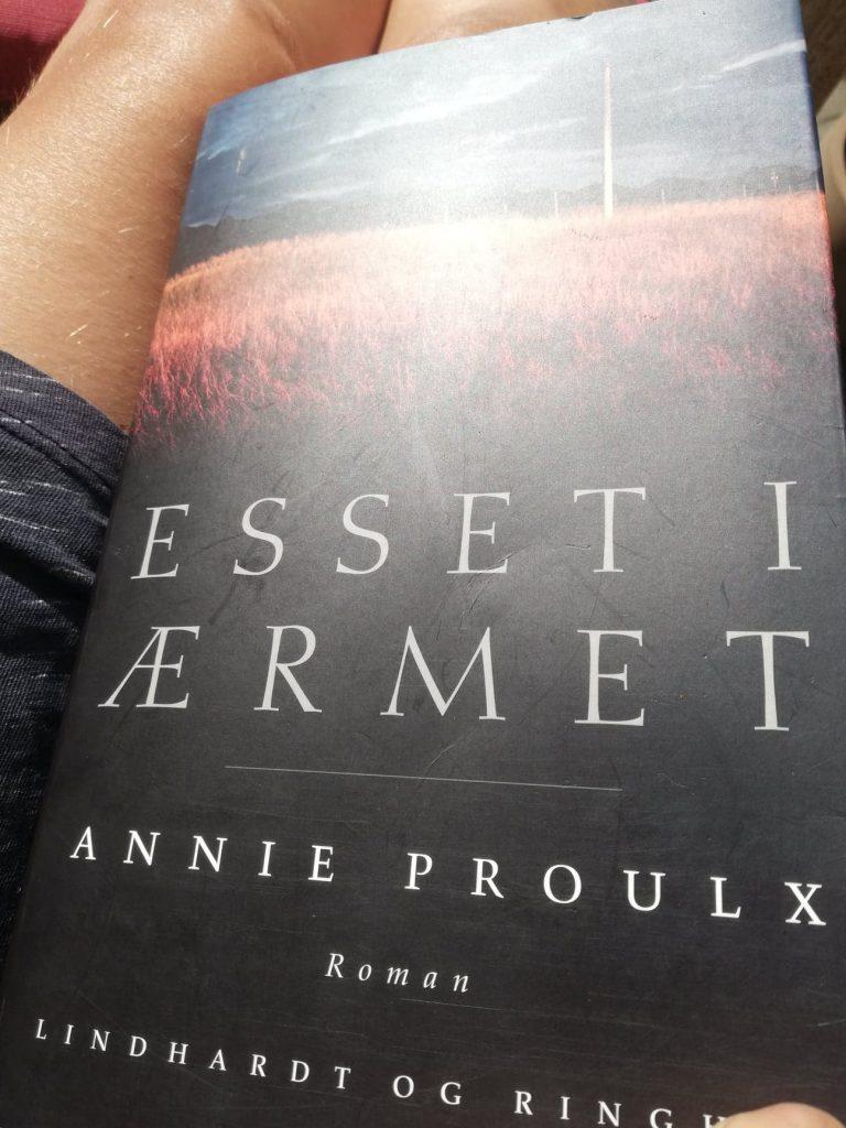 Ting at værdsætte.Bøger. Annie E Proulx. Taknemmelighedsdagbog.