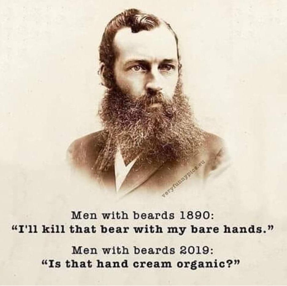 Ting at værdsætte. Humor. Mænd med skæg. Taknemmelighedsdagbog.