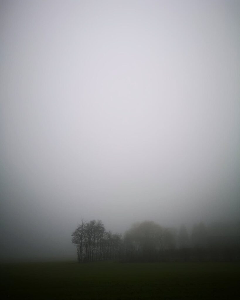 Marken klædt i tåge